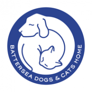 Evers donates to Battersea Dogs and Cats Home